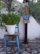 la chaise et le basilic, Mamoussia