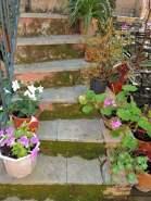 Escalier grec !